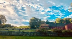 Relax On A Sunny Patio At Sharpe Hill Vineyard, A Stunning Winery In Connecticut