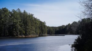 One Of New Jersey's Least Visited State Parks, Brendan T. Byrne State Forest Offers Seclusion And Serenity