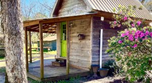 A Charming Little Nook Set In A Pecan Orchard, The Tiny House At Fulmer's Farmstead In Mississippi Offers A Getaway Like No Other