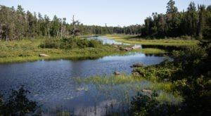 Vast Woods Await At Beltrami Island State Forest, Where You'll Find The Headwaters Of Five Minnesota Rivers