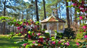 Get Lost In Cape Fear, An Impressive Garden That's Practically A Labyrinth In North Carolina
