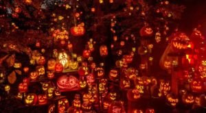 A Popular Halloween Event In Kentucky, Jack O' Lantern Spectacular Will Happen In 2020 As A Drive-Thru Experience