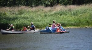 Beat The Summer Heat With A Paddling Trip Down The Wapsipinicon River In Iowa