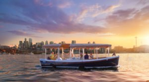 Rent Your Own Electric Party Boat In Washington For An Amazing Time On The Water