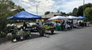A Visit To The Drive-Thru Farmers Market In Kentucky Will Be Sure To Make Your Day