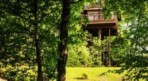 Stay Overnight At This Spectacularly Unconventional Treehouse In Pennsylvania