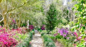 Surround Yourself With Endless Color At The Burden Museum & Gardens In Louisiana