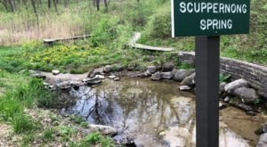 With Natural Springs And Surprise Ruins, The Scuppernong Springs Nature Loop Is The Ideal Wisconsin Summer Hike
