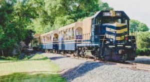 The River Fox Train In Northern California Takes You Through Gold Rush History And Ends With Gem Mining