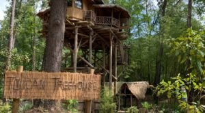 Escape To A Jungle Garden Treehouse Without Ever Leaving Arkansas