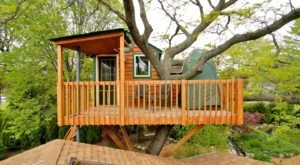 Stay Overnight At This Spectacularly Unconventional Treehouse In Illinois