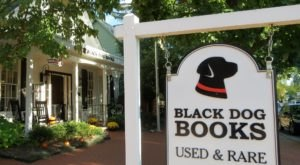 Treasure Hunt For Rare Collectibles At The Whimsical Black Dog Books In Indiana