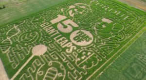 Voted One Of The Best Corn Mazes In The Country, Exploration Acres' Corn Maze Is a Must-Visit Fall Destination In Indiana