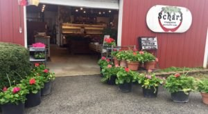 There's So Much Fresh Produce At Scharf Farm In Illinois, It's Like A Mini Farmers Market Year-Round