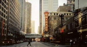 Few People Know That Chicago, Illinois Was Once Called 'Skunk Town'