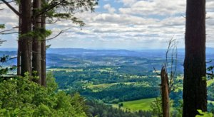 Pack Your Picnic And Head To Bald Peak State Scenic Viewpoint For An Afternoon Adventure