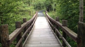 Follow A Magical Boardwalk Trail Through The Woods When You Hike Limberlost Trail In Virginia