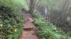 Winding Through Woods, Waterfalls, And A Graveyard, Little Devil's Stairs Trail In Virginia Is Full Of Intrigue
