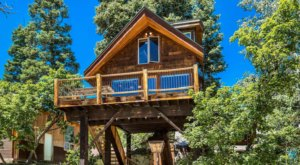 Stay Overnight At This Spectacularly Unconventional Treehouse In Utah