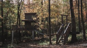 Stay Overnight At This Spectacularly Unconventional Treehouse In Ohio