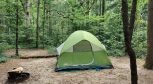 Plan A Family Camping Trip Under The Stars At Killens Pond In Delaware