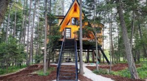 Stay Overnight At This Spectacularly Unconventional Treehouse In Montana