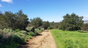 360 Acres Of Outdoor Adventures Await You At Hope Nature Preserve, A Picturesque Natural Oasis In Southern California