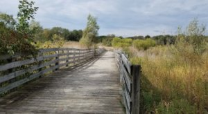 9 Easy Hikes To Add To Your Outdoor Bucket List In Metro Detroit