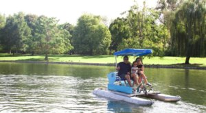 Rent A Paddle Boat At Julia Davis Park In Idaho And Cruise Around On The Water