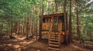 Stay Overnight At This Spectacularly Unconventional Treehouse In Vermont