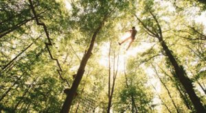 Take A Ride On The Longest Zipline In Delaware At Lums Pond State Park