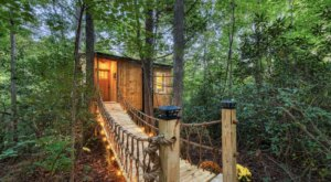 Stay Overnight At This Spectacularly Unconventional Treehouse In North Carolina