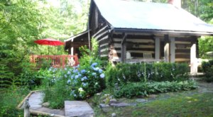 The 7 Best North Carolina Log Cabins On Airbnb Where You Can Plan A Gorgeous Getaway