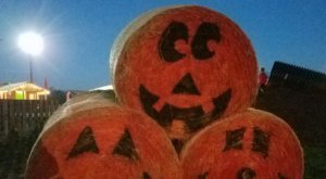 Shelby Corn Maze Is A Beautiful Fall Farm Hiding In Plain Sight In North Carolina That You Need To Visit This Autumn