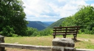 You Could Spend Hours Soaking In The Views From These West Virginia Benches