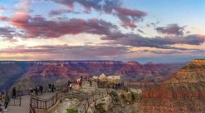 313-Million-Year-Old Fossils Have Been Discovered In Arizona's Grand Canyon