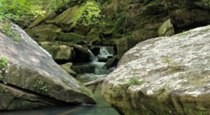 Alabama's Cane Creek Canyon Nature Preserve Is A Nature Lover's Dream