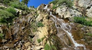Galena Falls Trail Is A Beginner-Friendly Waterfall Trail In Nevada That's Great For A Family Hike