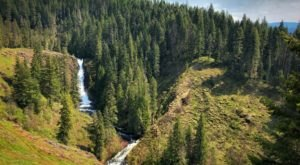 A Trail Full Of Forest Views By Elk Creek Will Lead You To A Waterfall Paradise In Idaho