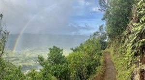Manoa Cliff Trail Might Be One Of The Most Beautiful Short-And-Sweet Hikes To Take In Hawaii
