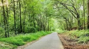 Explore A New Side Of Cleveland Park On The Swamp Rabbit Bike Trail In South Carolina
