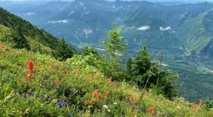 Mailbox Peak Trail Is A Challenging Hike In Washington That Will Make Your Stomach Drop