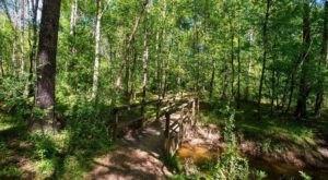 Admire The Historic Bridge On The Jones Bridge Trail, An Easy 4-Mile Hike In Georgia