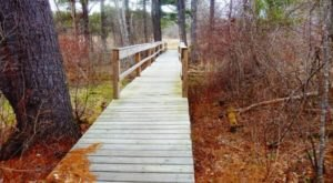 The Great Bay National Wildlife Refuge In New Hampshire Is So Well-Hidden, It Feels Like One Of The State's Best Kept Secrets
