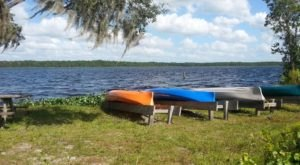The Lake Manatee Park In Florida Is So Well-Hidden, It Feels Like One Of The State's Best Kept Secrets