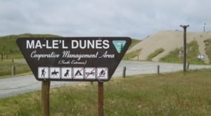 Visit One Of The Most Pristine Dune Systems In The West At The Ma-le'l Dunes In Northern California