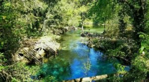 This Natural Spring Swimming Hole In Florida Is So Hidden You'll Probably Have It All To Yourself