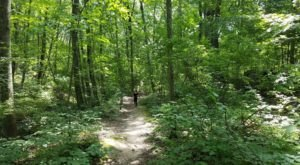 The Lime Rock Preserve Trail Might Be One Of The Most Beautiful Short-And-Sweet Hikes To Take In Rhode Island