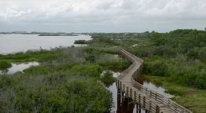 Off The Beaten Path In Boca Ciega Millennium Park, You'll Find A Breathtaking Florida Overlook That Lets You See For Miles
