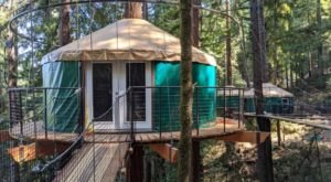 Stay Overnight At This Spectacularly Unconventional Treehouse In Northern California